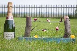 Foodfotografie van radijsjes op creatieve wijze geserveerd in een landelijke omgeving